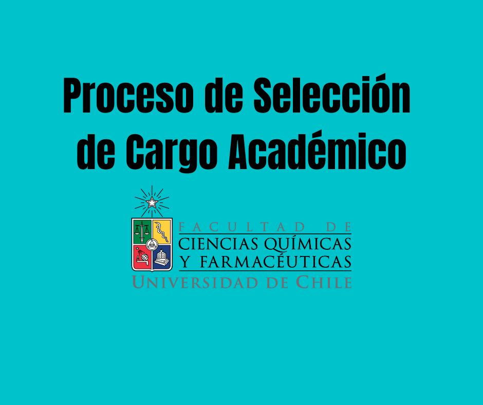 Proceso de selección de cargo docente en la Universidad de Chile (2021)